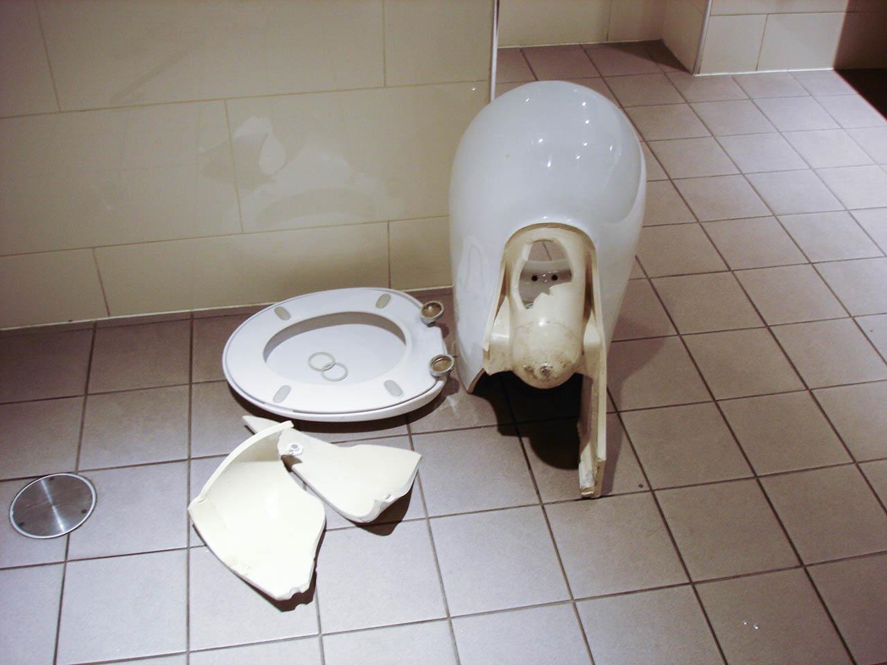 broken caroma toilet